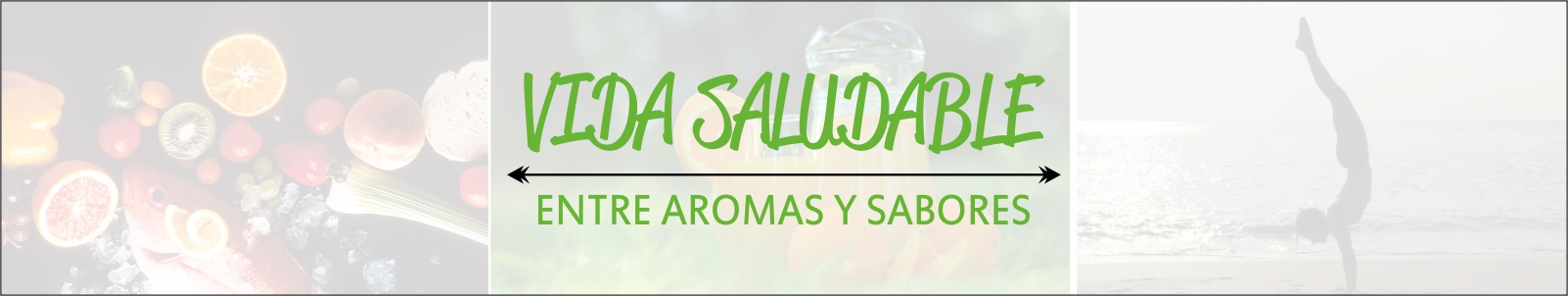 Blog Vida Saludable